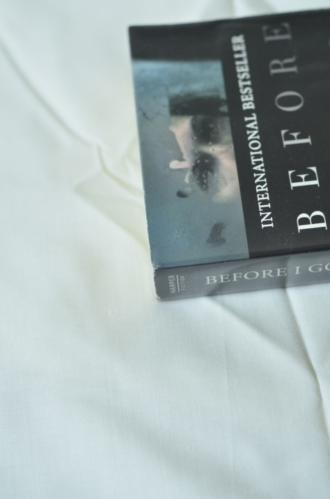 Before I Go To Sleep – S. J. Watson